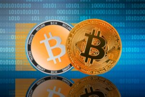 bitcoin vs bitcoin cash różnice