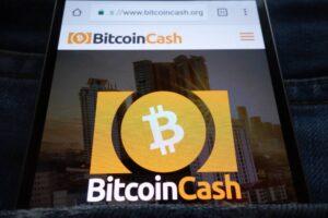 co to jest bitcoin cash